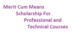 Merit Cum Means Scholarship For Professional and Technical Courses CS