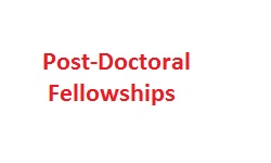 Post-Doctoral Fellowships
