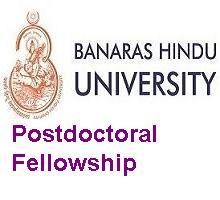 Banaras Hindu University-Postdoctoral Fellowship