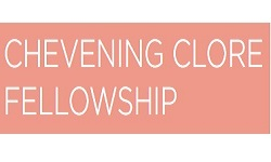 Chevening Clore Fellowship