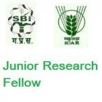 ICAR-Sugarcane Breeding Institute Junior Research Fellow