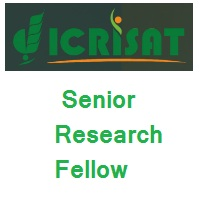ICRISAT Senior Research Fellow