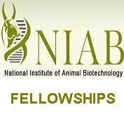 National Institute of Animal Biotechnology NIAB Junior Research Fellow