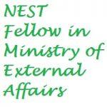 NEST - New, Emerging & Strategic Technologies - Fellows