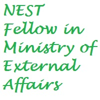 NEST - New, Emerging & Strategic Technologies - Fellows