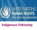 OHCHR Indigenous Fellowship Programme