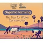 Paragraph Writing Contest on Ideas on Constructive works of Mahatma Gandhi - Organic Farming