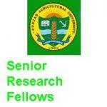 PUNJAB AGRICULTURAL UNIVERSITY LUDHIANA Senior Research Fellows