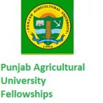 PUNJAB AGRICULTURAL UNIVERSITY Senior Research Fellow
