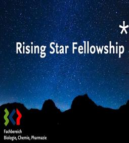 Rising Star Fellowship Program
