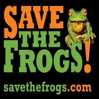 SAVE THE FROGS Art Contest