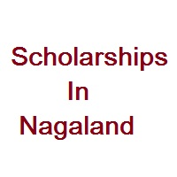 Scholarships In Nagaland