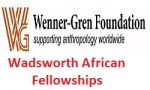 The Wadsworth African Fellowships
