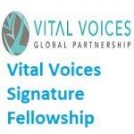 Vital Voices Signature Fellowship