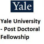 Yale University - MacMillan Center Post Doctoral Fellowship 2020-2021