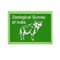 ZOOLOGICAL SURVEY OF INDIA POST DOCTORAL FELLOWSHIPS